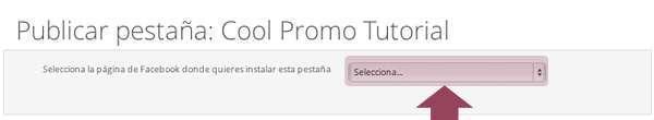 Publicación Cool Promo: Selecciona fan page dónde se va a publicar