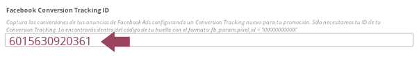 Cool Tabs: Facebook Conversion Tracking ID